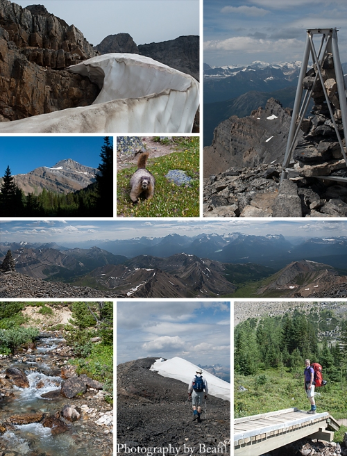 Neat Ice, Mt. Richardson (totally climbed that!), Scarily Tame Marmot, View from the top of Mt. Richardson, View from Mt. Richardson to Lake Louise, Alpine Creek, My Mom atop Mt. Richardson, Hiking In