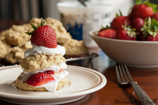 GF Strawberry Shortcake-3