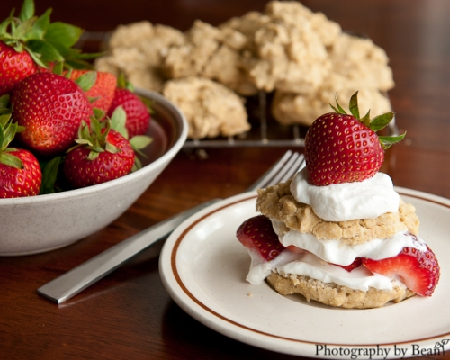 GF Strawberry Shortcake-4