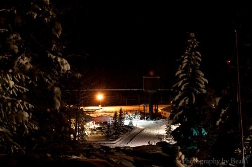 Field by Night-12