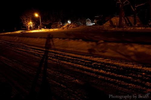 Field by Night-5