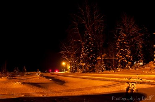 Field by Night-7