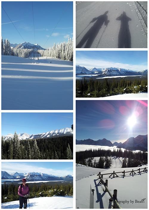 Skiing 2014_2