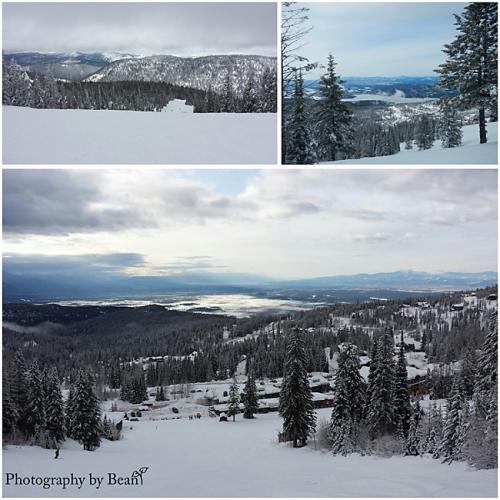 Skiing 2014_4