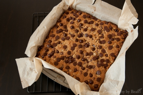 Fantastic Sharing Chocolate Peanut Butter Oatmeal Cookie Bars-2